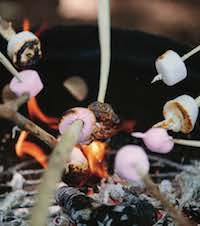 Image of marshmallows being toasted on a bonfire
